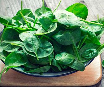 Las espinacas son una fuente excelente de proteinas y minerales de origen vegetal