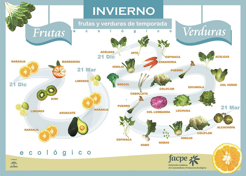 Frutas y verduras en Invierno